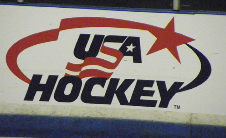 Previewing the United States' 2012 World Hockey Championship Team