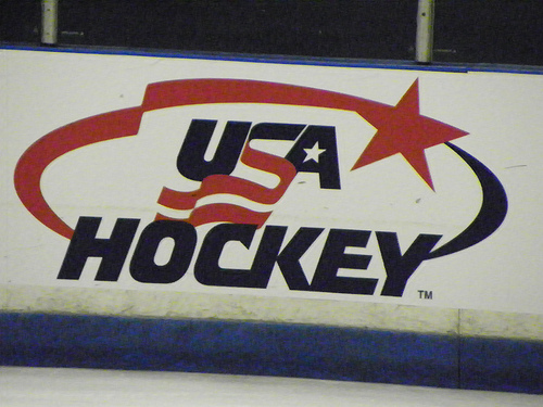 USA Hockey Logo (photo property of the author)