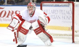 Red Wings Throw Hat Into Goaltender Sweepstakes