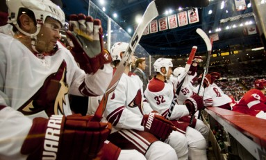 Optimism Abounds For Phoenix Coyotes and Fans