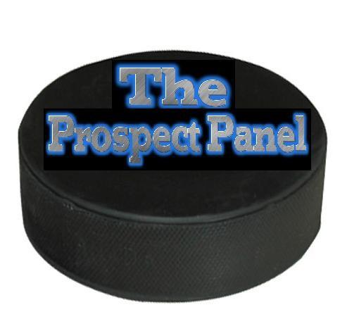 The Prospect Panel Logo