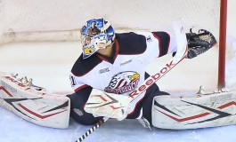 "The ""Import""-ance of the European CHL Goalie"