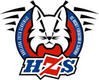 The History of Slovenian Hockey