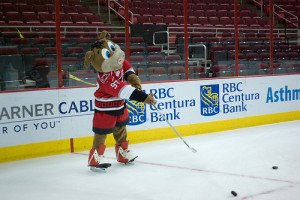 Stormy The Pig, Mascot for the Carolina Hurricanes. (Flickr/Captsinslack)