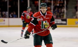 NHL Draft 2013: Top 90 Final Prospect Rankings