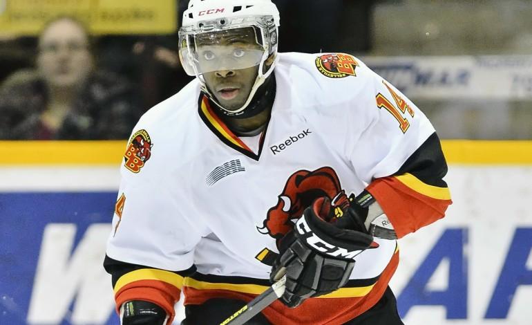 Jordan Subban – The Next Ones: NHL 2013 Draft Prospect Profile