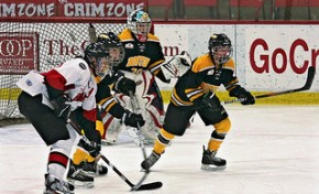Working in the Shadows of the CWHL