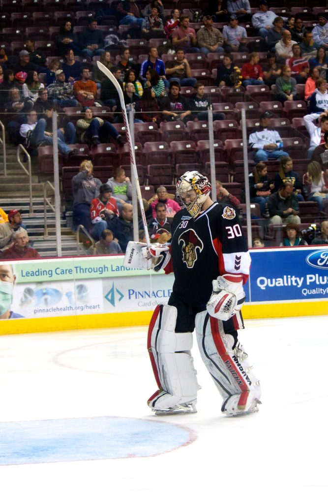Binghamton Senators goaltender Andrew Hammond. (Annie Erling Gofus/The Hockey Writers)