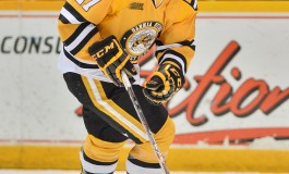 Nikolay Goldobin – The Next Ones: NHL 2014 Draft Prospect Profile