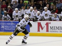 Hershey Bears (stat19/flickr)