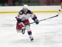 Hartford Wolf Pack forward Ryan Potulny (Chris Rutsch/Hartford Wolf Pack)