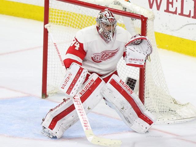 Petr Mrazek to arbitration, NHL, Detroit Red Wings