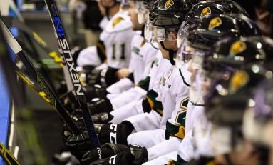 Stars, Panthers to Play Preseason Game in London, Ontario